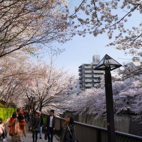 Photo 2014-04-01 15 30 24 (1)