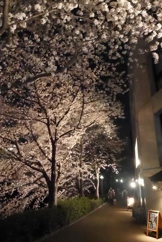 Photo 2014-04-01 21 25 33